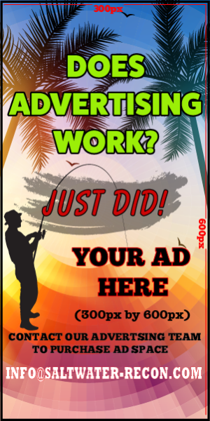 saltwater-recon-advertising-works-300x600