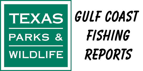 tpwd fishing report Weekly Gulf Coast Fishing Reports - by Saltwater Recon